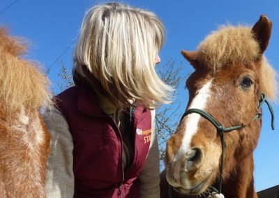 Horse Sense Coaching