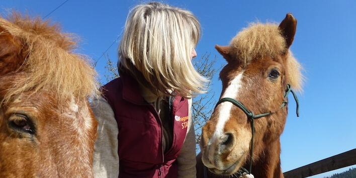 Magnus Horse Sense für Coaches & Trainer
