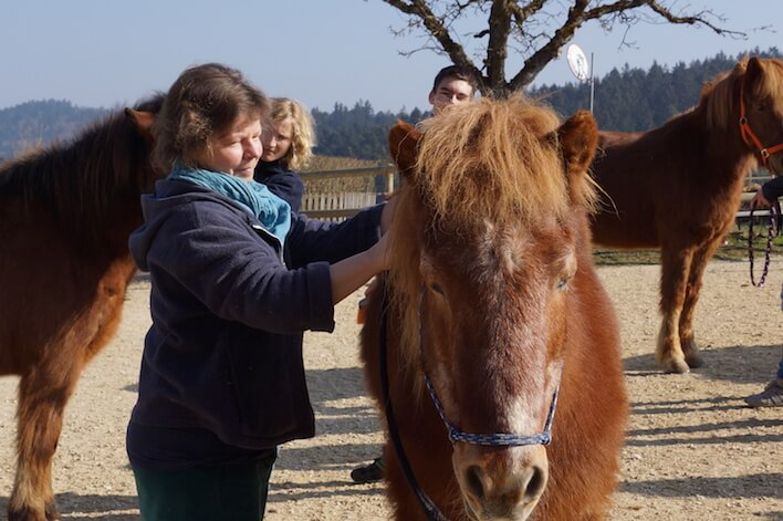 Magnus Horse Sense Hintergrund
