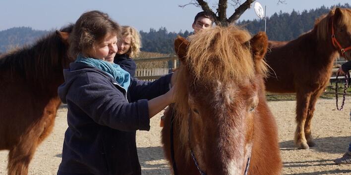 Magnus Horse Sense für Eltern
